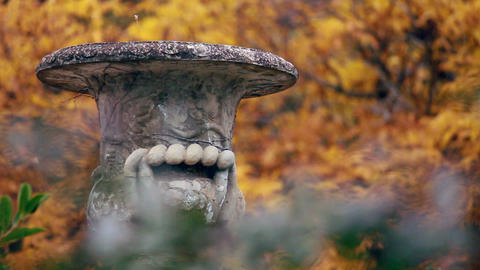 Flowerpot in the garden near Tsar's palace (Massandra,... Stock Video Footage
