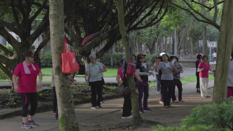 Middle Aged Taiwanese Women Exercising Early Morni stock footage