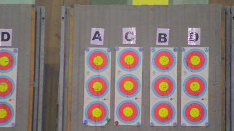 Archery Targets Live Action