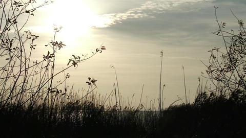 4K Autumn Lakeside Sunset 1 Footage