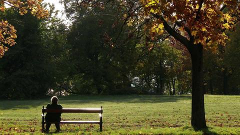 4K Elder Women Sitting on a Bench in Autumn Park Footage