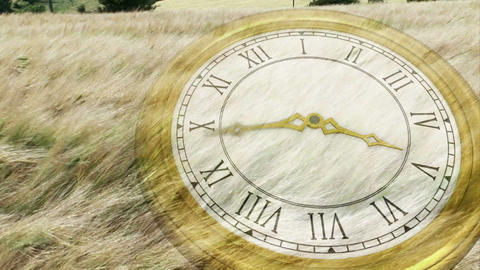 Clock ticking over wind blowing grass Animation