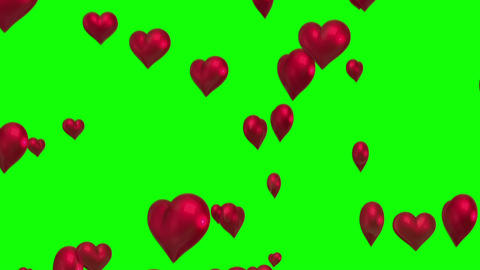 Red hearts floating against green screen Animation