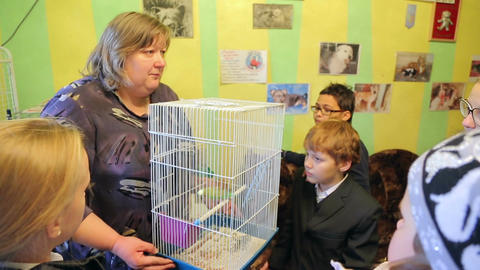 Animal shelter, guide shows a cage with a parrot Live Action