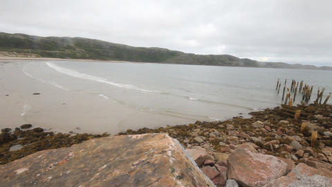 coast of Barents Sea polar region summer Footage