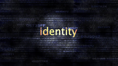 Identity Animation