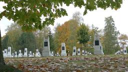 Soviet Military Cemetery - Autumn 7 stock footage