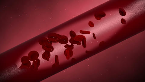 blood vessel hd Animation