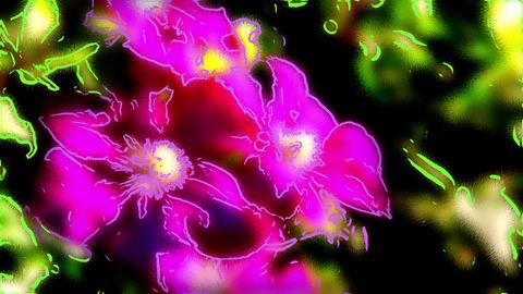Fantastic flower Animation