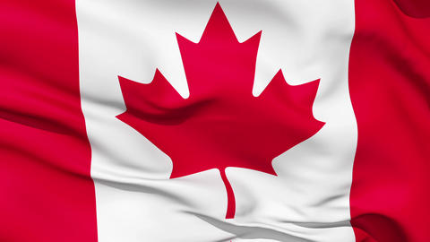 Realistic 3d seamless looping Canada flag waving in the wind Animation