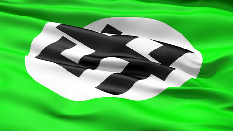 Flapping Green Flag With Dollar Sign Animation