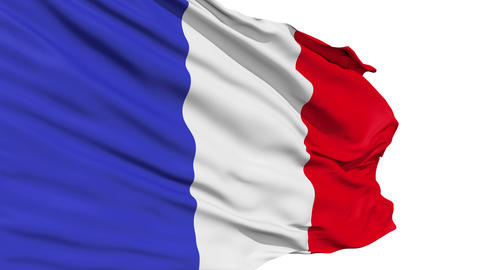 Realistic 3d seamless looping France flag waving in the wind Stock Video Footage
