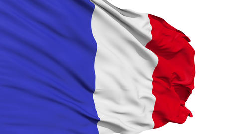 Realistic 3d seamless looping France flag waving in the wind Animation