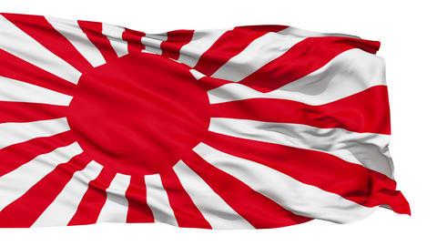 Realistic 3D Detailed Slow Motion Japan Flag In The Wind stock footage