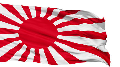 Realistic 3D detailed slow motion japan flag in the wind Stock Video Footage