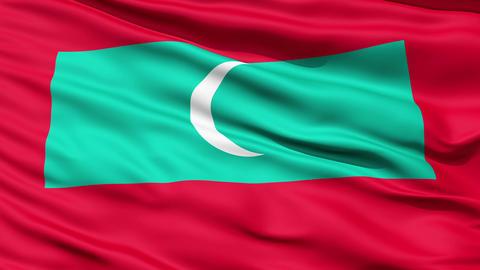 Republic Of Maldives Flag stock footage