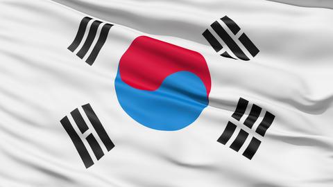 The South Korea Flag Animation