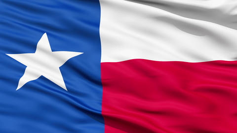 The State of Texas Flag Stock Video Footage