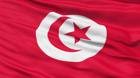 Realistic 3D detailed slow motion tunisia flag in the wind Animation