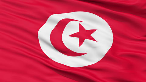 Realistic 3D detailed slow motion tunisia flag in the wind Stock Video Footage