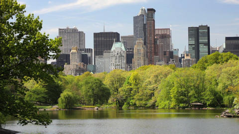 New York Skyline Stock Video Footage