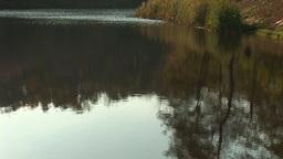 pond 7 Footage