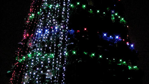 christmas light 0001 Stock Video Footage