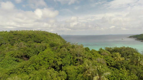 Aerial shot of the jungle and the bay Footage