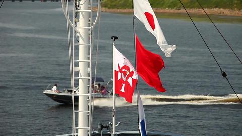 Naval flags Footage