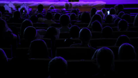 The contours of heads of the audience in the hall Live Action