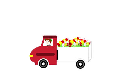 The truck rides and transporting flowers on a whit Stock Video Footage