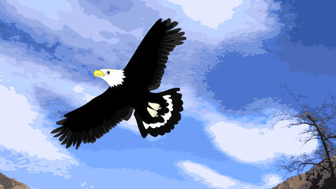 Lovely eagle soars in the sky, animation, cartoon Animation