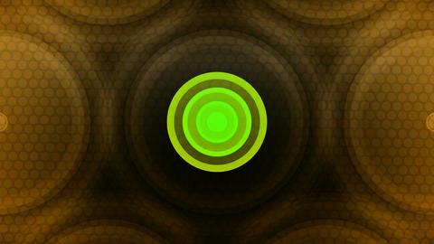 circle spot lights Animation
