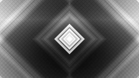 white square spot Animation