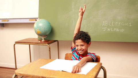 Cute Schoolboy Raising His Hand To Answer A Questi stock footage