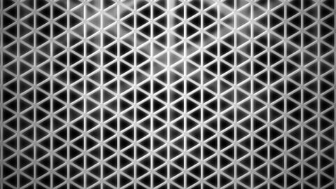 grayscale triangle cage Animation