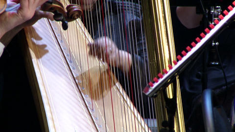 play on a stringed musical instrument harp major Footage