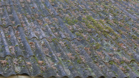 Mossy roofplates of a house Footage