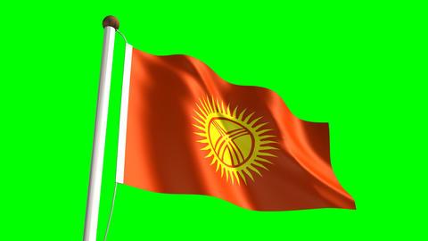Kyrgyzstan Flag stock footage