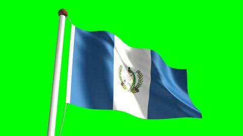 Guatemalan flag Animation