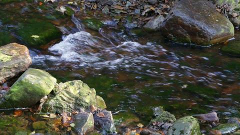 Small Mountain Creek Footage