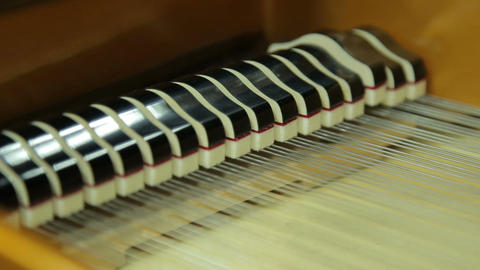Work hammers inside the grand piano, close-up Live Action