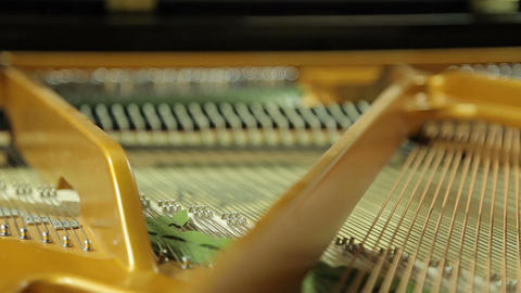 Work hammers inside the grand piano Live Action