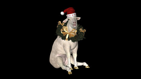 Holiday Sheep - Seating - I Animation