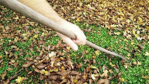 4 K Raking Autumn Leaves 1 Footage