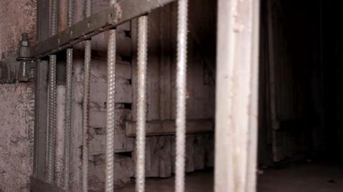 Cell Door Opens stock footage