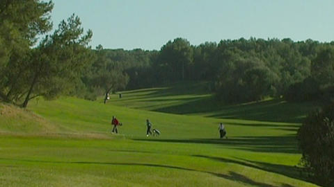 Golf Stock Video Footage
