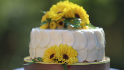 White Creamy Delicious Cake Zoom Out stock footage