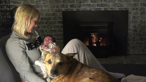 The Bonding of the Mother, Baby and Dog Footage
