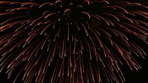 firework ライブ動画